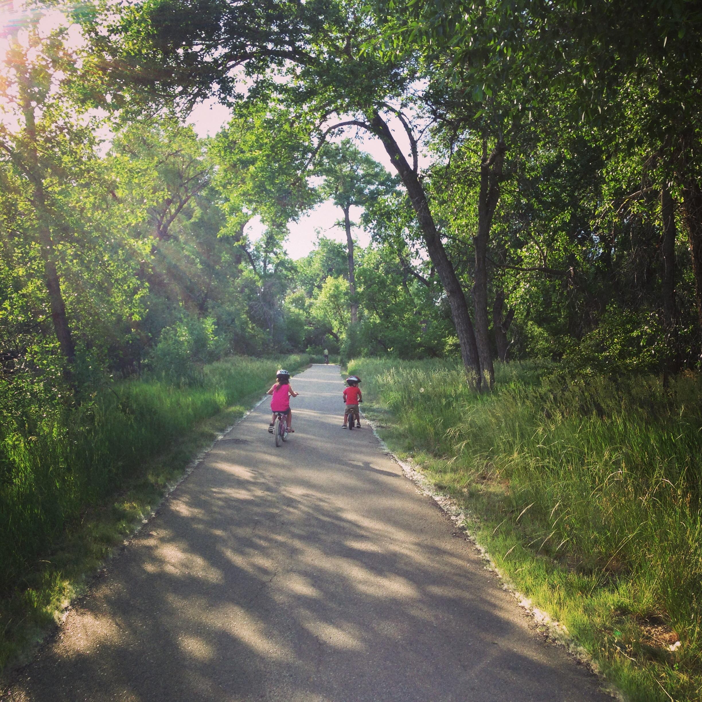 bike through the trees